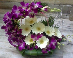 Orchid And White  Gerbera Daisies  Flower Arrangement