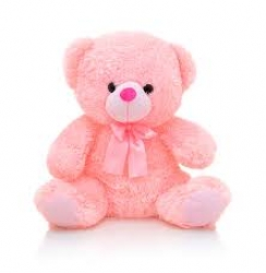 6 Inch Pink Teddy Bear