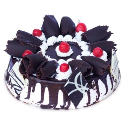 Five Star Black Forest  Cake 2 Kg