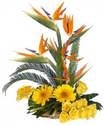 Exotic Flower Bouquet