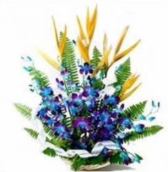 Orchid Bird Of Paradise Flower Arrangement
