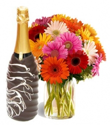 Champagne With Gerbera Bouquet