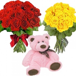 Red Roses ,Yellow Roses  Teddy