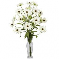 White Daisies In A Glass Vase