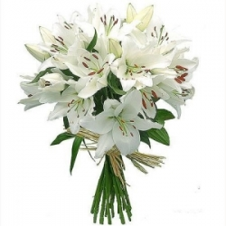 White Lilies Bunch