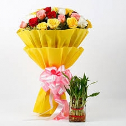 Multi Color Roses Bouquet And 2 Layer Bamboo Plant