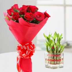 Red Roses Bouquet And Bamboo Plant