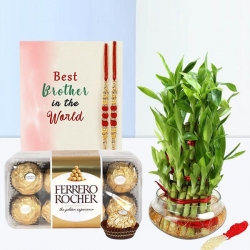 2 Layer Lucky Bamboo And Ferrero Rocher Box