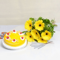 Yellow Gerbera Special