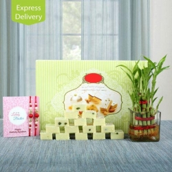 2 Layer Lucky Bamboo With Rakhi Combo