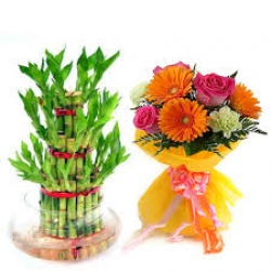 Mix Flower Bunch And Bamboo Plant