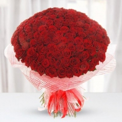 Red Roses Bouquet For Girlfriend