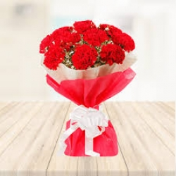 18 Red  Carnation  Bunch