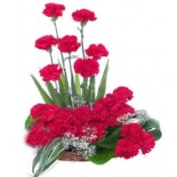24 Red Carnation Basket