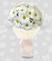 Flower Bouquet Of White Daisies
