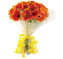 20 Orange Gerbera Daisies Bouquet
