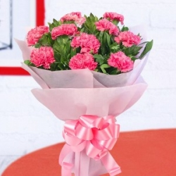18 Pink Carnation Bunch