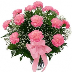 12 Pink Carnation Bunch