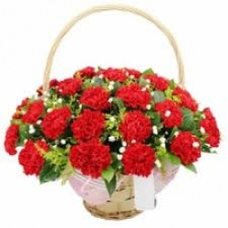 Red Carnation Basket Arrangement