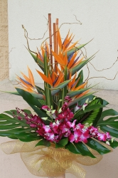 Orchid And Bird Of Paradise Bouquet