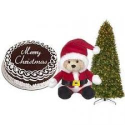 Gift Hamper For Christmas