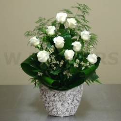 White Roses  Arrnagement