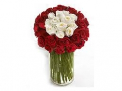 Red And White Roses Arrangement