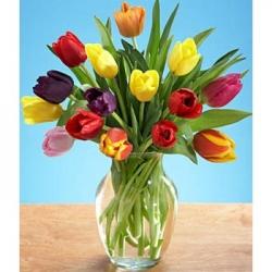 Multicolor Tulip Arrangement