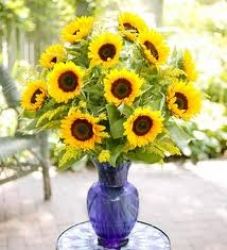 Deluxe Sunflower Arrangement