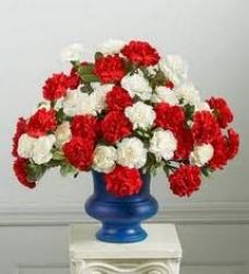 Carnation Carnival - 2