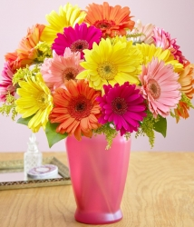 Bright Daisies Vase Arrangement