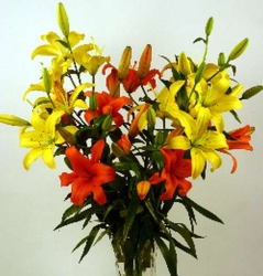 Yellow And Red Lilies Bouquet
