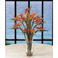 Exotic Flower Arrangement-11