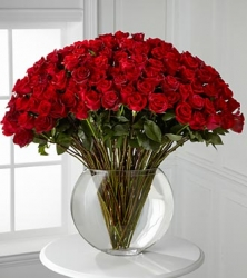 50 Red Roses In A Glass Vase