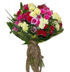 50 Multicolor Carnation  Bouquet