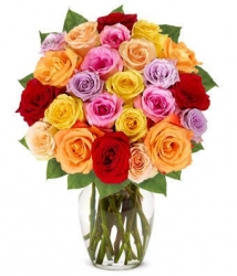 50 Multicolor Rose Arrangement