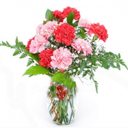Red And Pink Carnation Bouquet