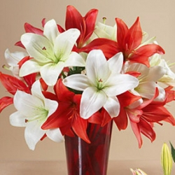 Exotic Lilies Flower Arrangement