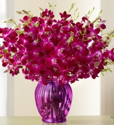 Glass Vase Arrangement Of Orchid