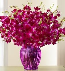 Glass Vase Arrangement Of Orchid